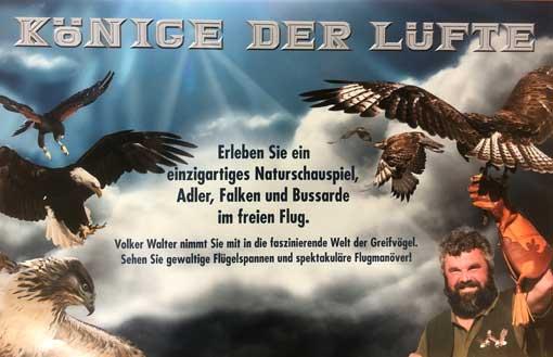 Faszination Greifvögel - Juli 2020 - Schloss Heltorf